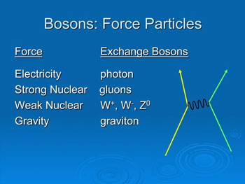 Bosons: Force Particles