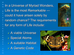 Life is the most remarkable wonder in the universe.
