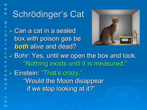 Schrodinger's Cat Thought Experiment.